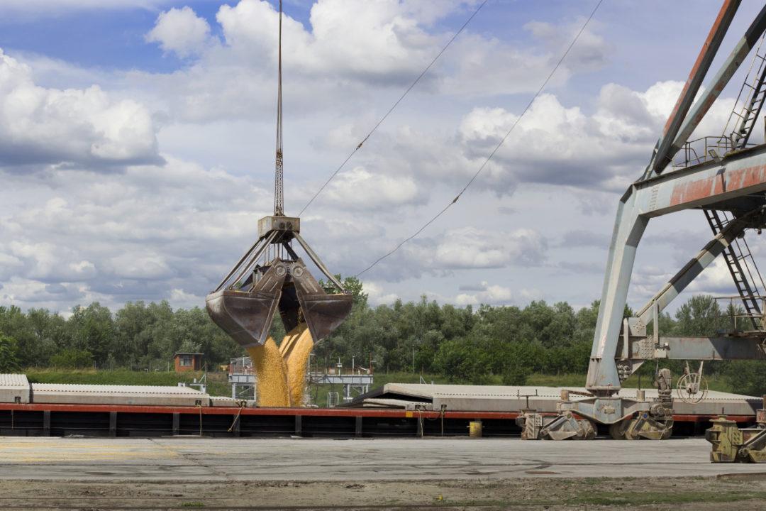 grain shipping