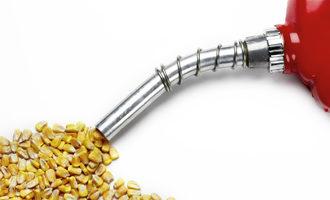 Ethanol corn adobestock 25624623 e