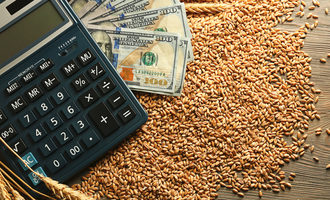 Wheat money calculator photo adobe stock e