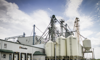 Scoular winkler bird food production facility photo cred scoular e