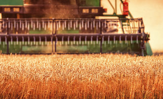 Wheat harvest photo cred adobe stock e