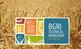 Bgri technical workshop logo e