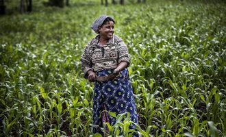 Fao sorghrum farmer in kenya photo cred fao