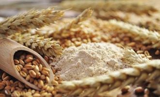 Whole wheat flour adobestock 35274452 e