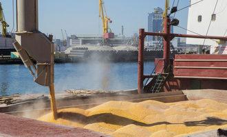 Grain shipping adobestock 226891947 e