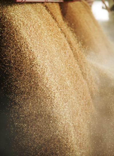 grain unloading dump