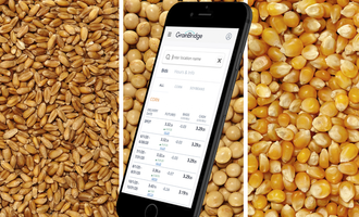 Grainbridge digital grain marketing platform photo cred grainbridge adobe stock e