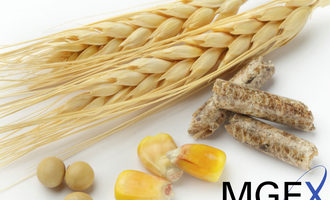 Mgex logo and commodities photo cred mgex and adobe stokc e