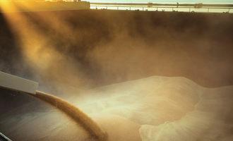 Shipping grain adobestock 162217112 e1