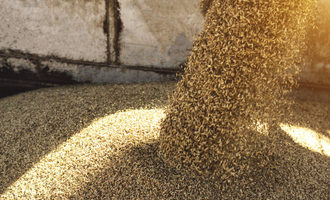 Grain shipping adobestock 221656185 e
