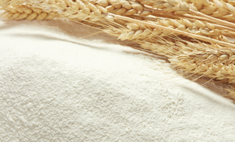 New era in wheat quality flour and wheat photo adobe stock oct e