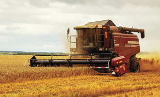 Weather hit crop means lower eu grains exports wheat harvest photo adobe stock e oct