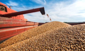 Wheat combine photo cred adobe stock e