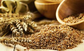 Whole grains adobestock 57643991 e