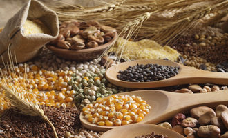 Whole grains adobestock 104634753 e