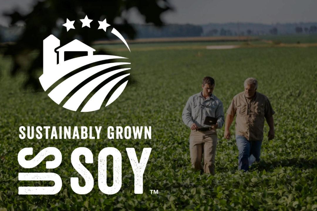 soy sustainability