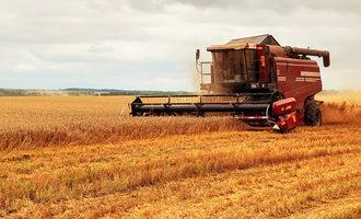 Wheatcropharvest photo adobe stock e