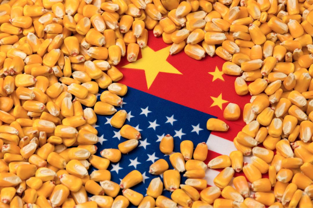 US China corn trade