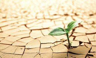 Drought adobestock 31371221 e