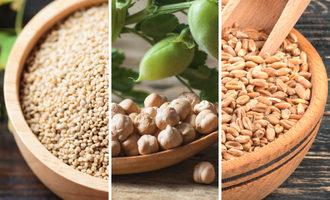 Quinoa chickpeas wheat photo adobe stock e