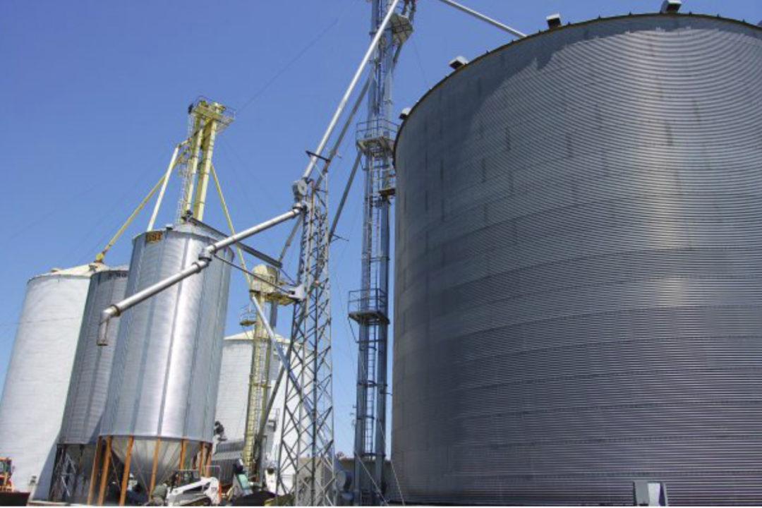 Associated Grain