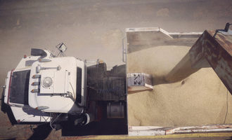 Grain handling shipping e