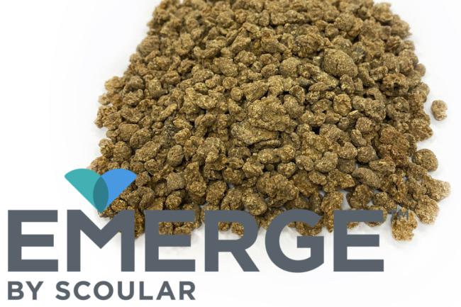 Scoular Barley feed Emerge facility