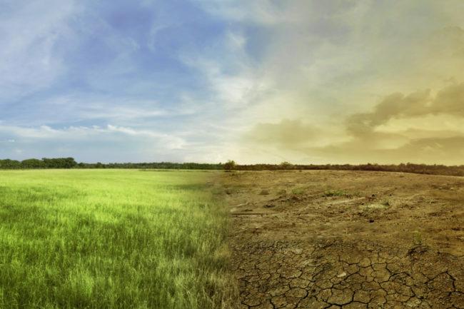 climate change sustainability