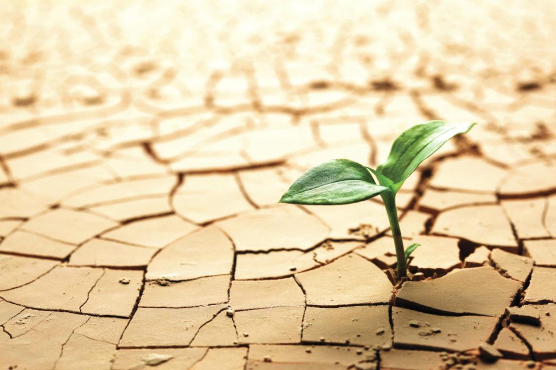 Drought_AdobeStock_31371221_E.jpg