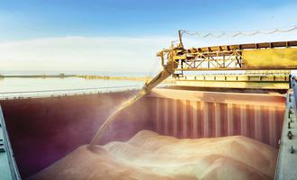 Shipping costs soaring grain shiploader photo cred adobe stock e july