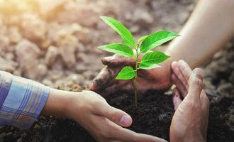 Sustainability adobestock 227308714 e