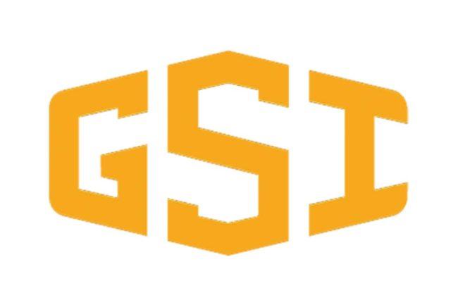 GSI logo color