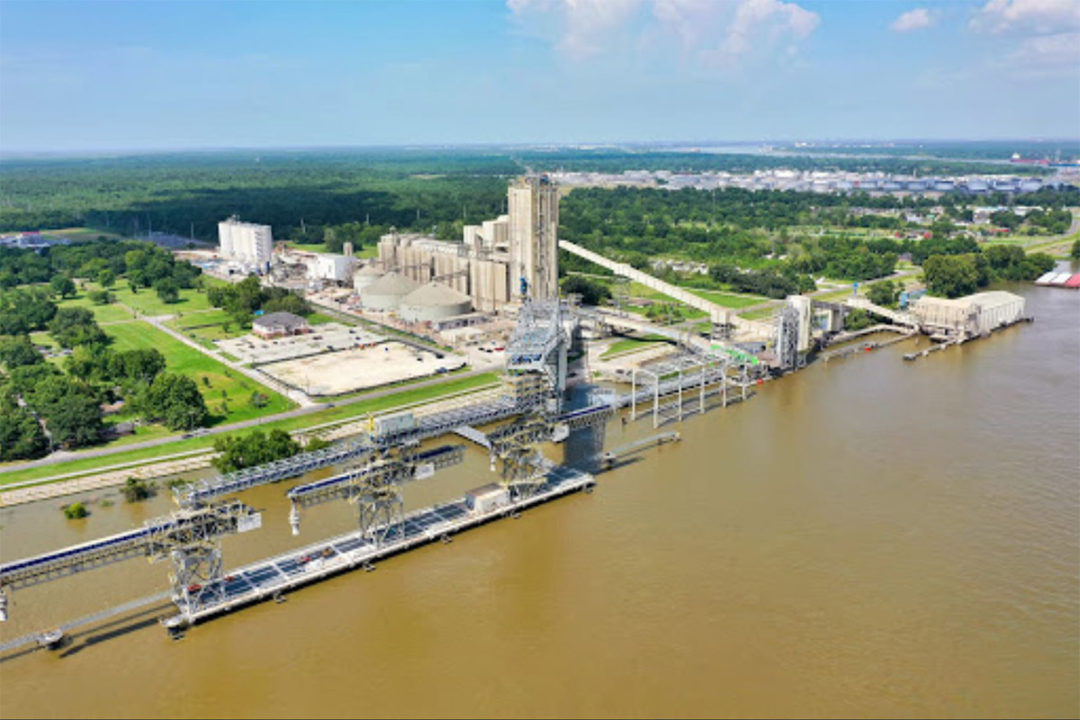 Bunge and Chevron form joint venture for renewable fuel production