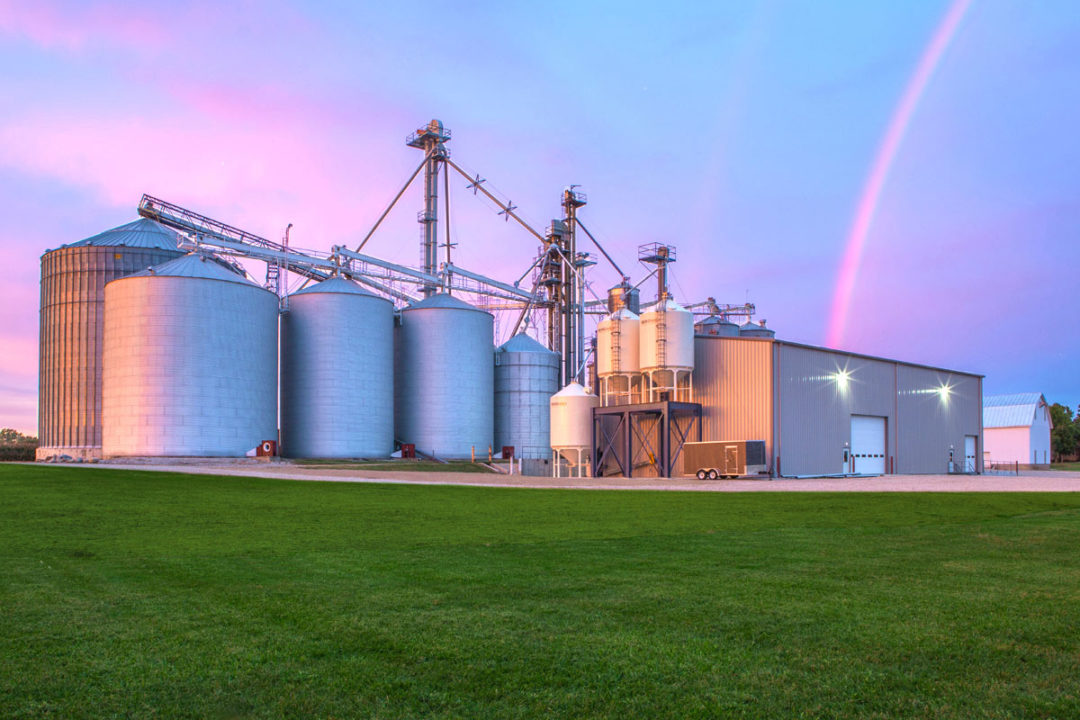 Scoular takes over ownership of Rogers Grain