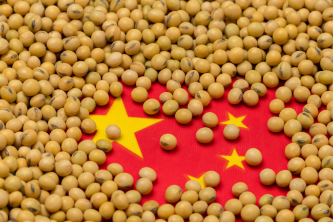 Soybean on top of flag of China