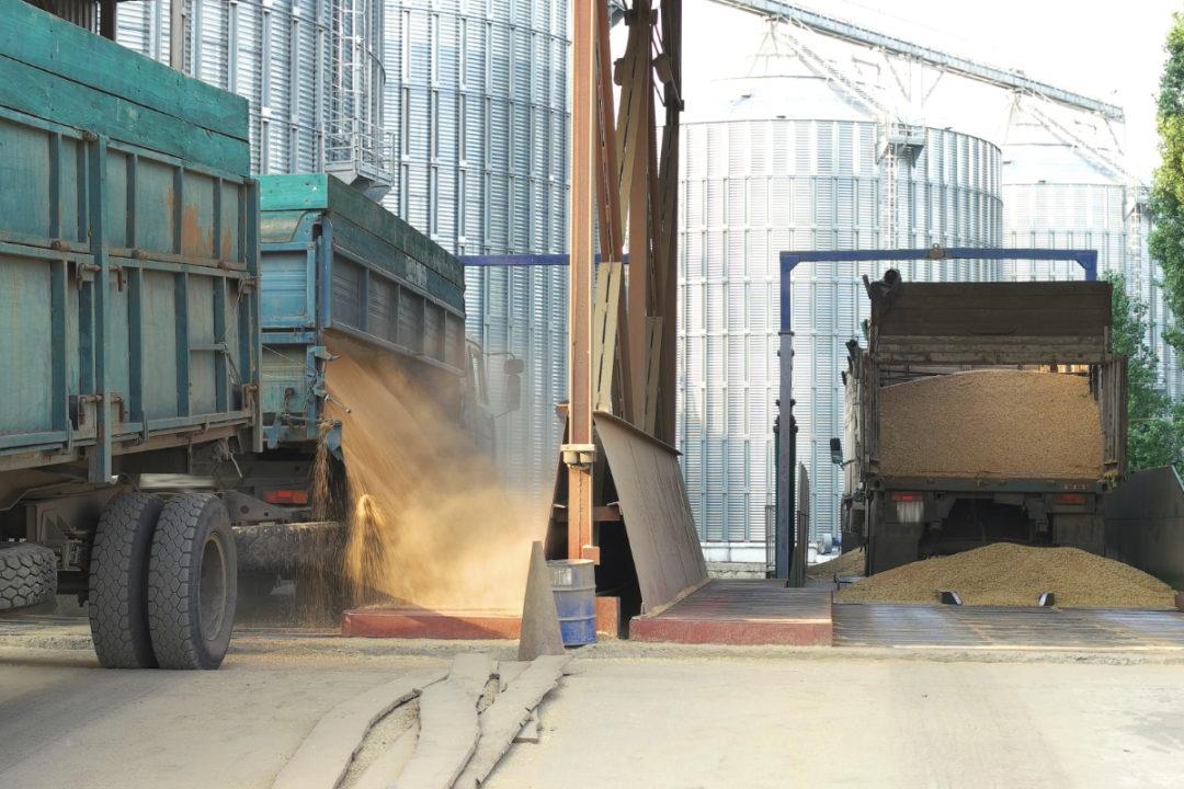bulk grain receival site