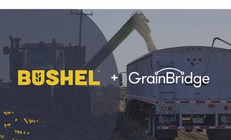 Bushel grain bridge
