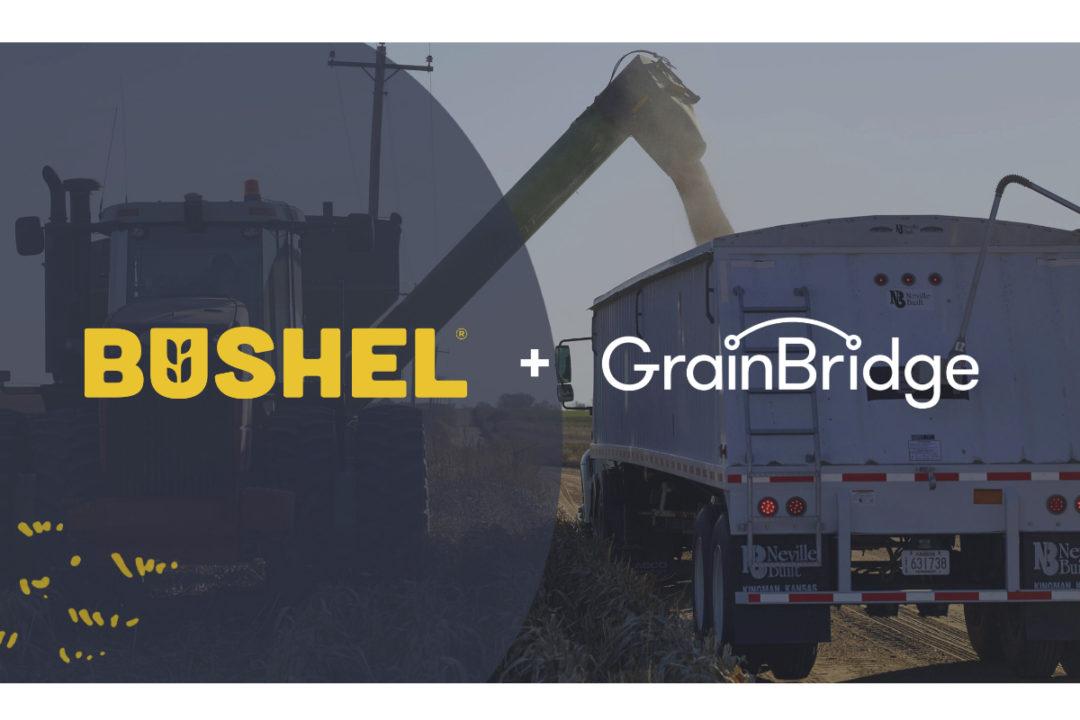 Bushel-Grain-Bridge.jpg