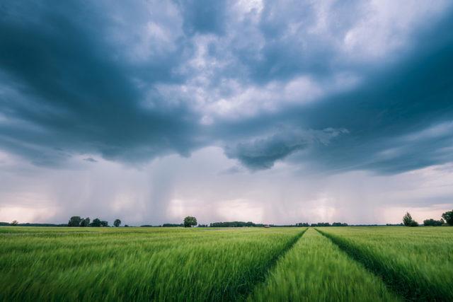 Storm field photo adobe stock e