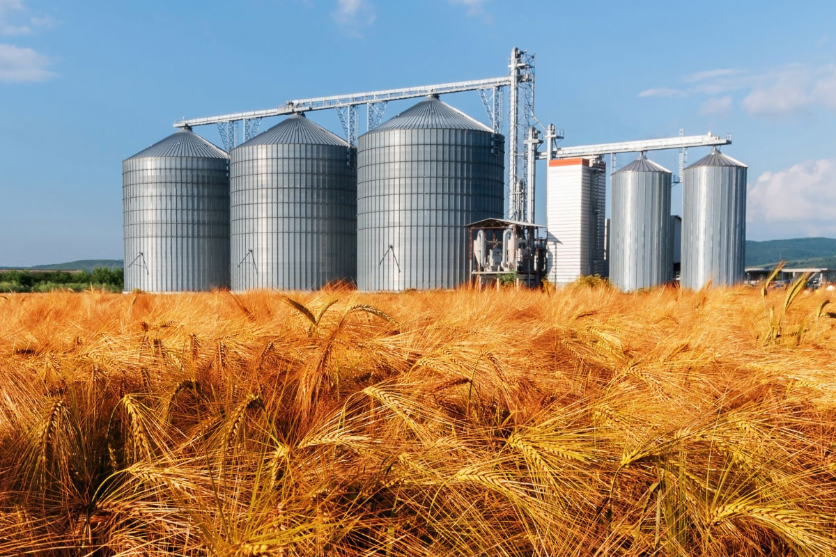Grain Storage And Handling World Grain