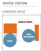 Digital Edition Landing Page: Video & Wide Skyscraper Ad positions