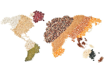 Grain Map of the World