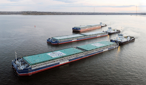 Nibulon cargo fleet