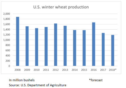 US winter wheat production