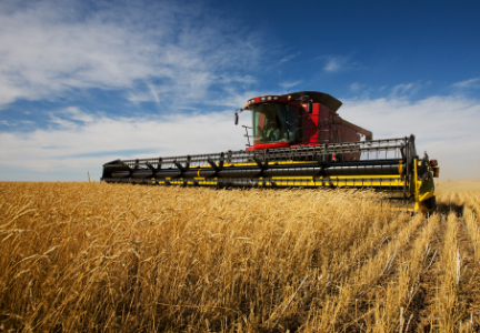 US winter wheat harvest